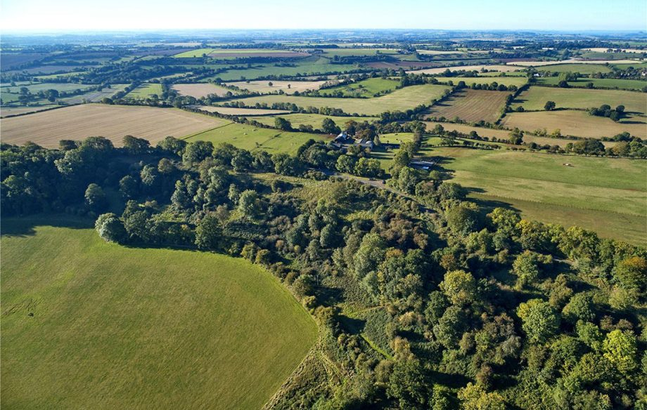 Woodland for sale in Oxfordshire