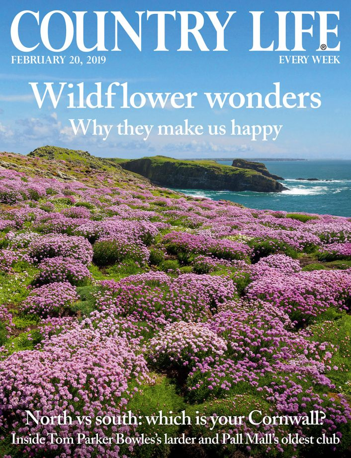 Cover of Country Life 20 February 2019