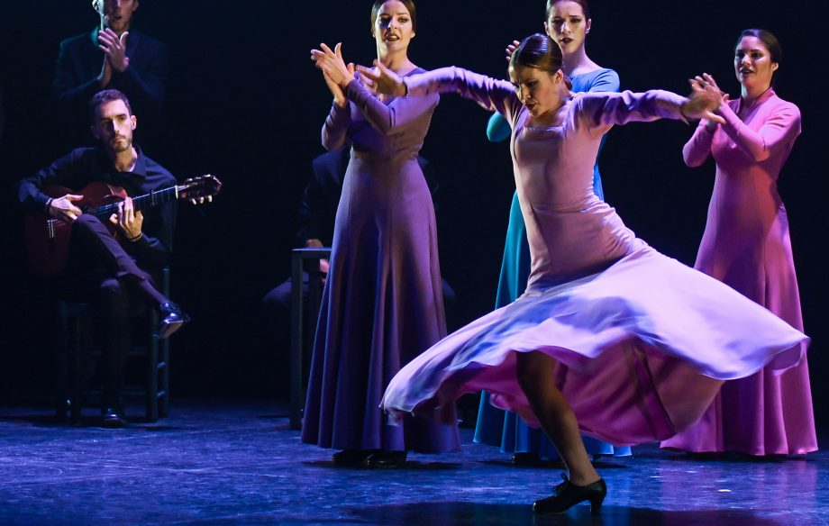 The Andalusian Flamenco Ballet in action