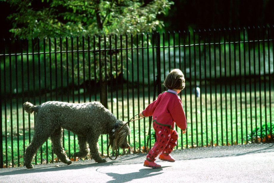 UK London. Little girl and dog walking in Regent's Park