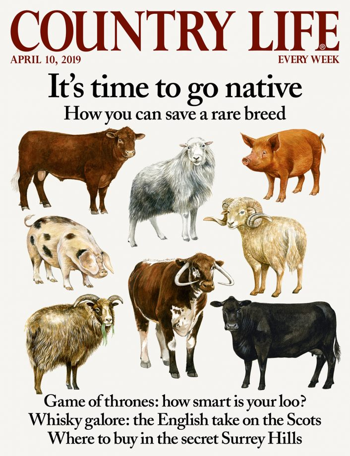 Country Life 10 April 2019