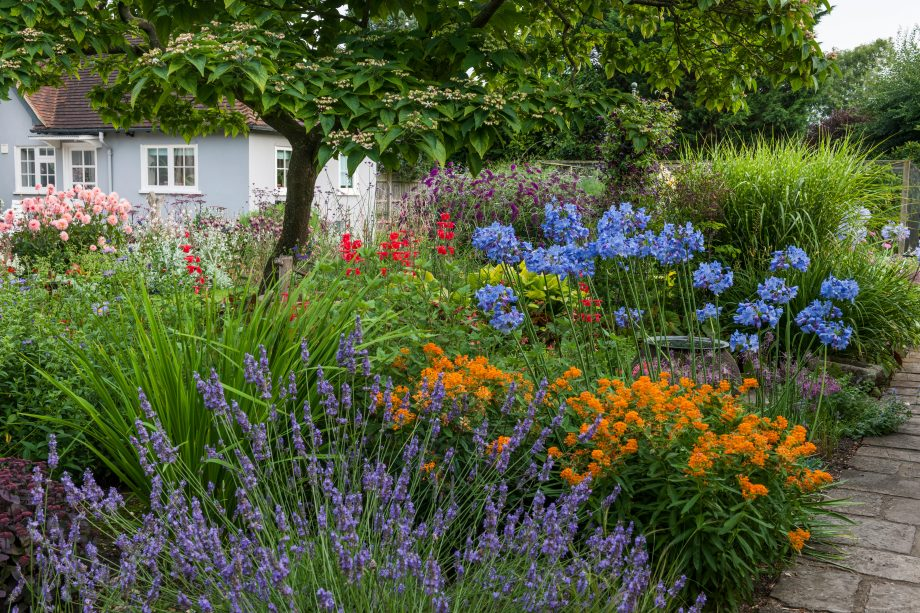 Beautiful mixed garden borders