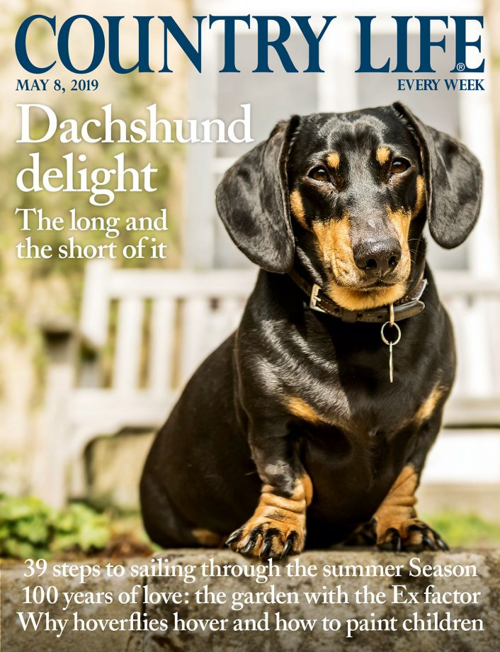 Country Life cover 8 May 2019