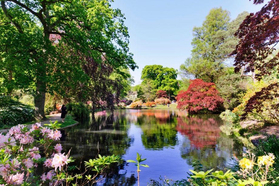 Exbury Gardens, Hampshire. Credit: Alamy