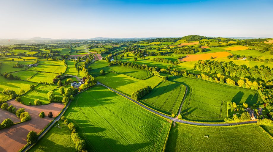 You'd have guessed it anyway, but now it's been proven: Britain's green and pleasant land is the best place to source your green and pleasant food.