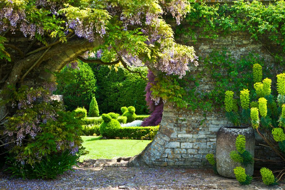 Alan Titchmarsh: How each of our English country gardens can play their part in saving the planet