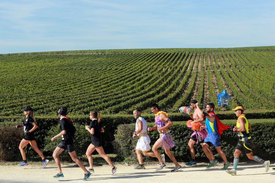 Athletes run past vineyards near Pauillac, during the Marathon du Medoc.
