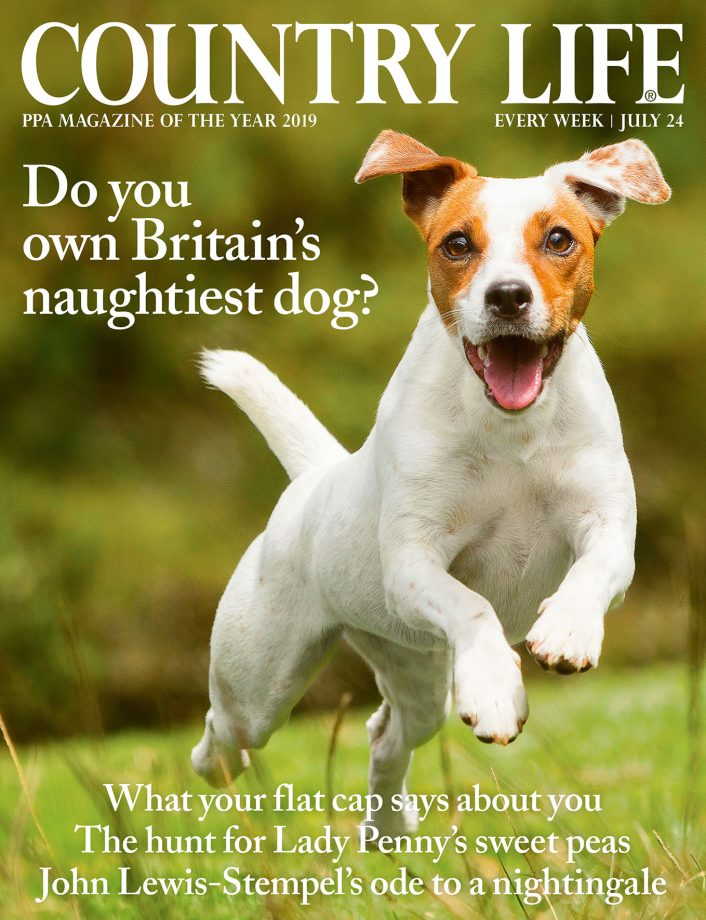 Country Life cover 24 July 2019