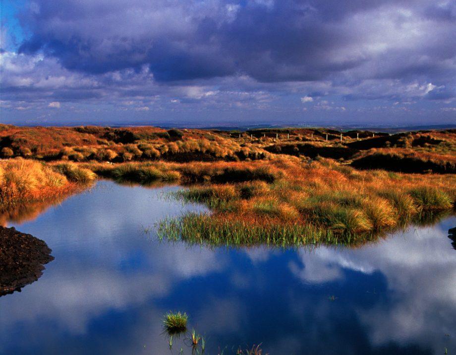 Expanses of peat bog on Black Hill, Yorkshire.