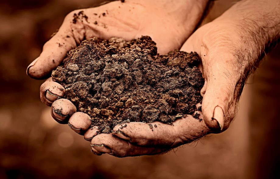 Man holding soil in hands