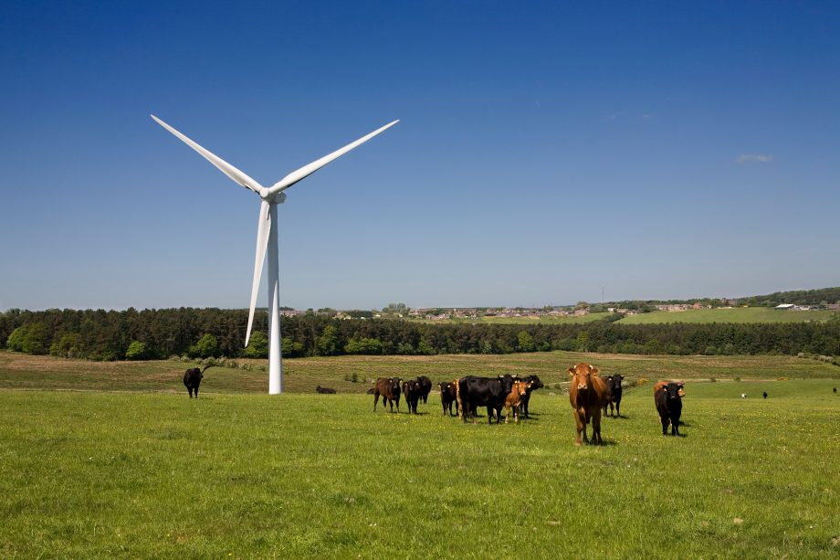 'Tipping point' reached for green energy as renewables topple coal across OECD nations