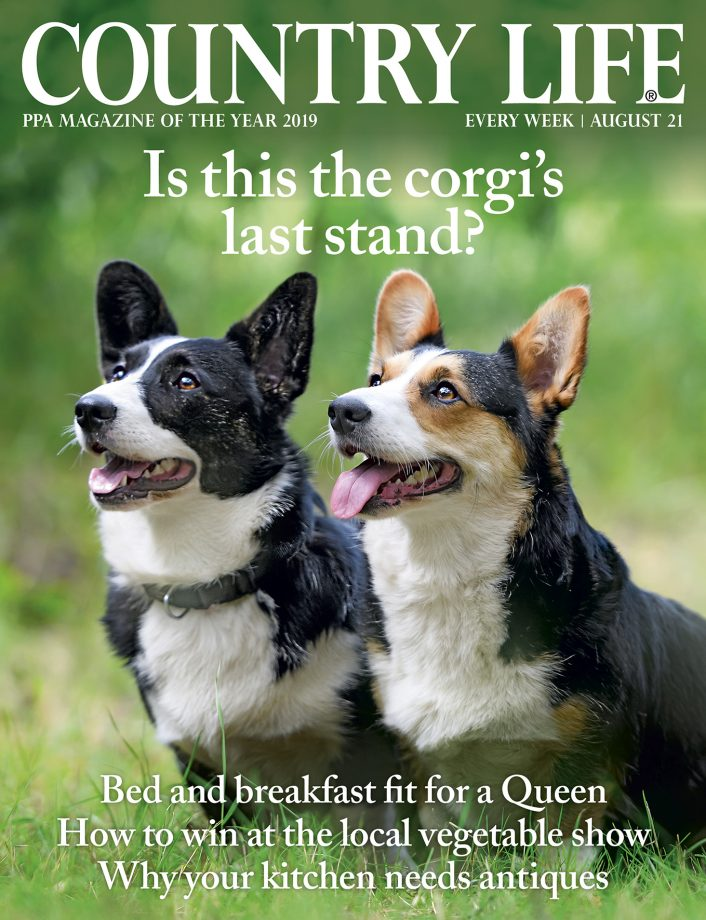 Country Life 21 August 2019