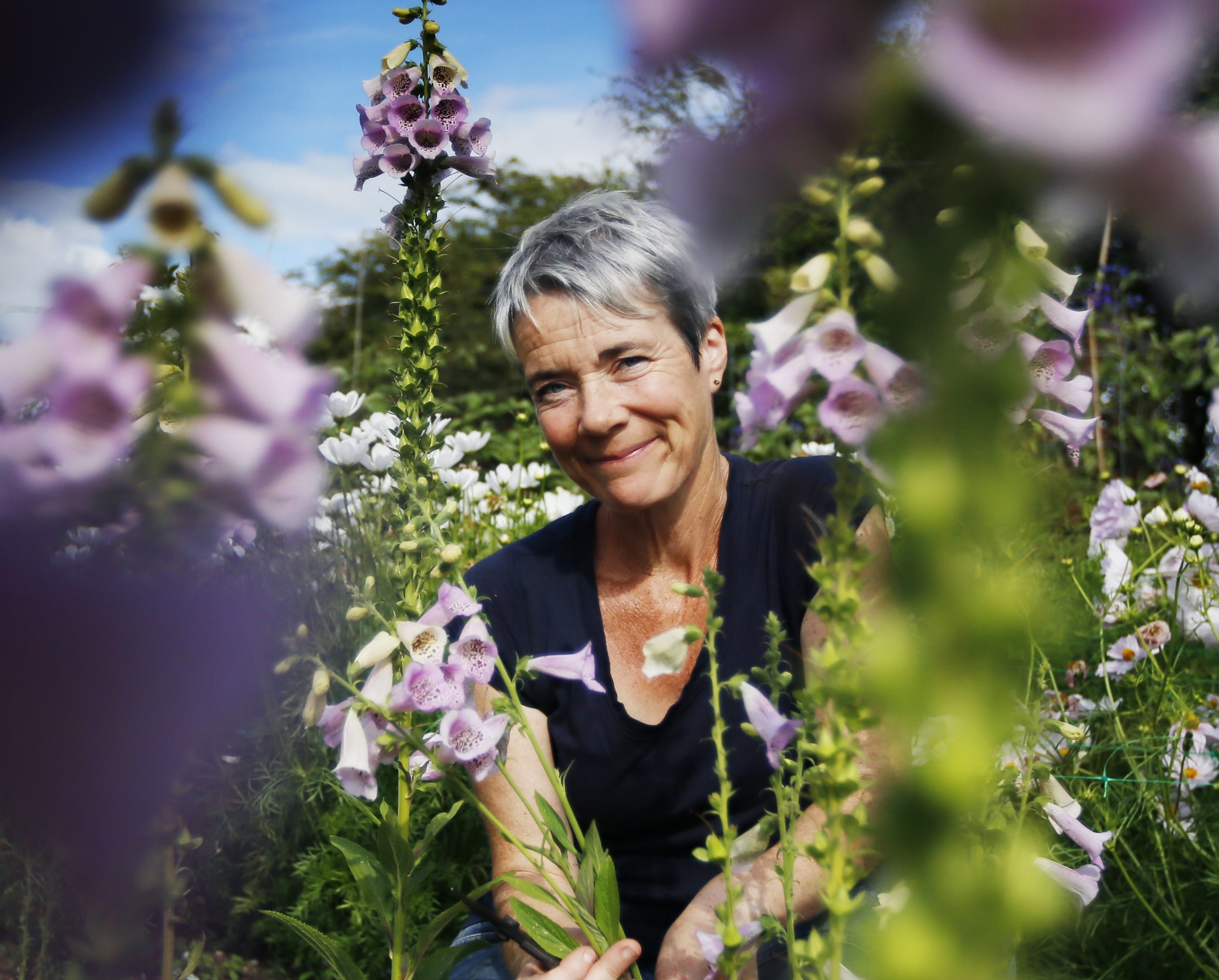 How to make a living off your garden: 'It might not be hugely profitable, but your lifestyle is rich' - Country Life