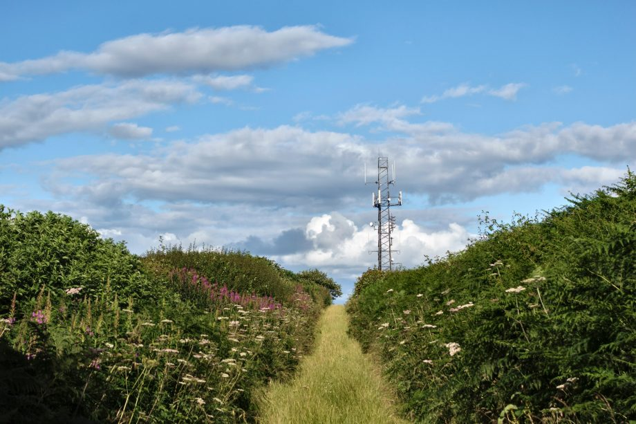 A mobile phone mast in the countryside