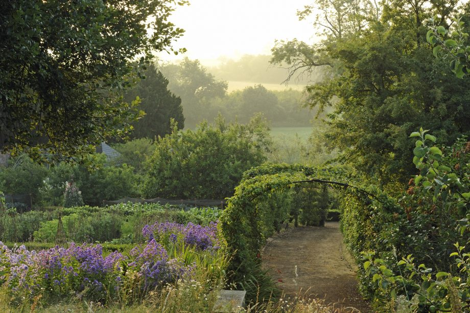 Pear tunnel — The garden at Banks Fee, Gloucestershire