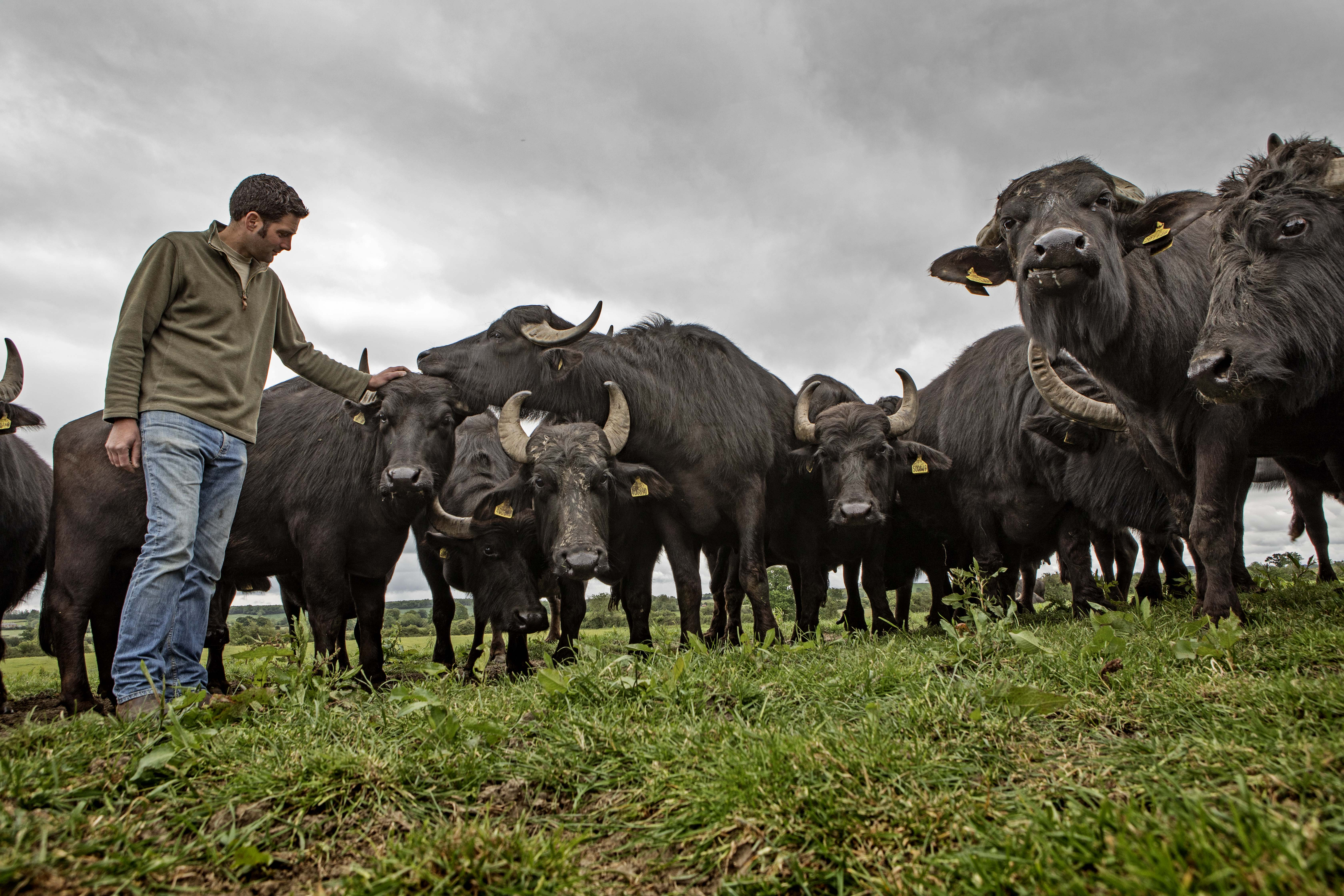 How farming has fallen from 'no finer investment' to ...