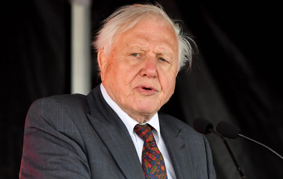 Sir David Attenborough, now 93, has lost none of his passion or eloquence.