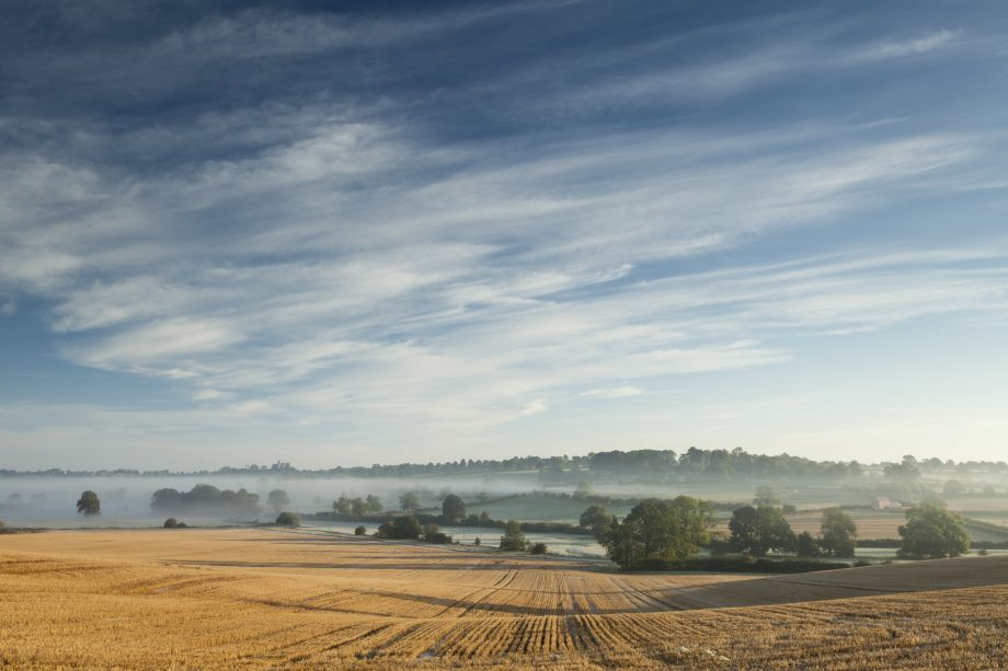Dawn mist in a shallow valley near Holdenby in Northamptonshire,