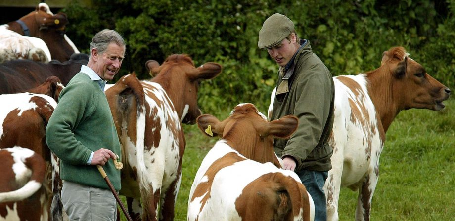 Prince William talks to his father, the Prince of Wales on his father's Duchy Home Farm in Tetbury, Gloucestershire.