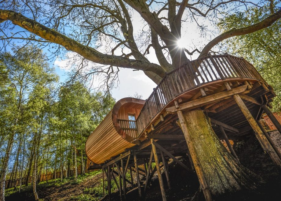 The Treehouse at The Fish Hotel