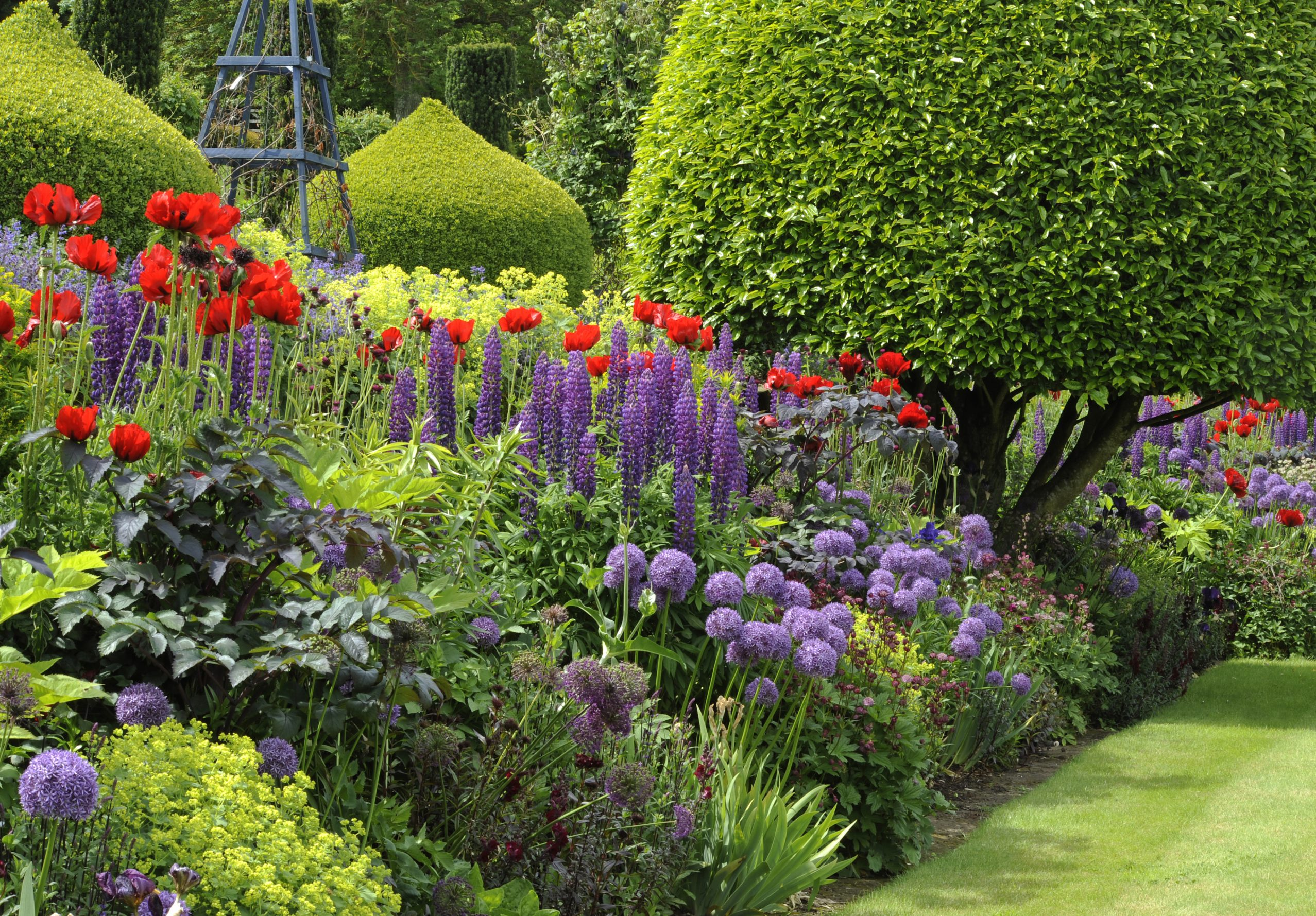 Why Gardeners Should Keep Ing Plants
