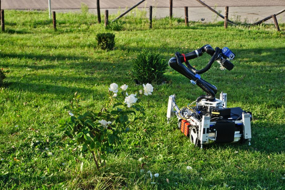 Gardening robot Trimbot trims topiaries