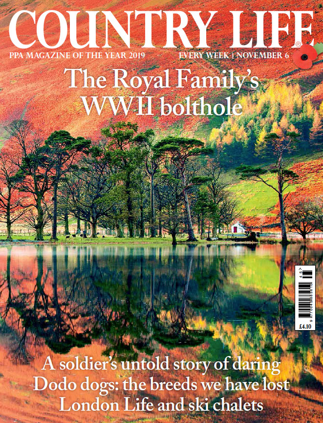 country life cover 6 november 2019