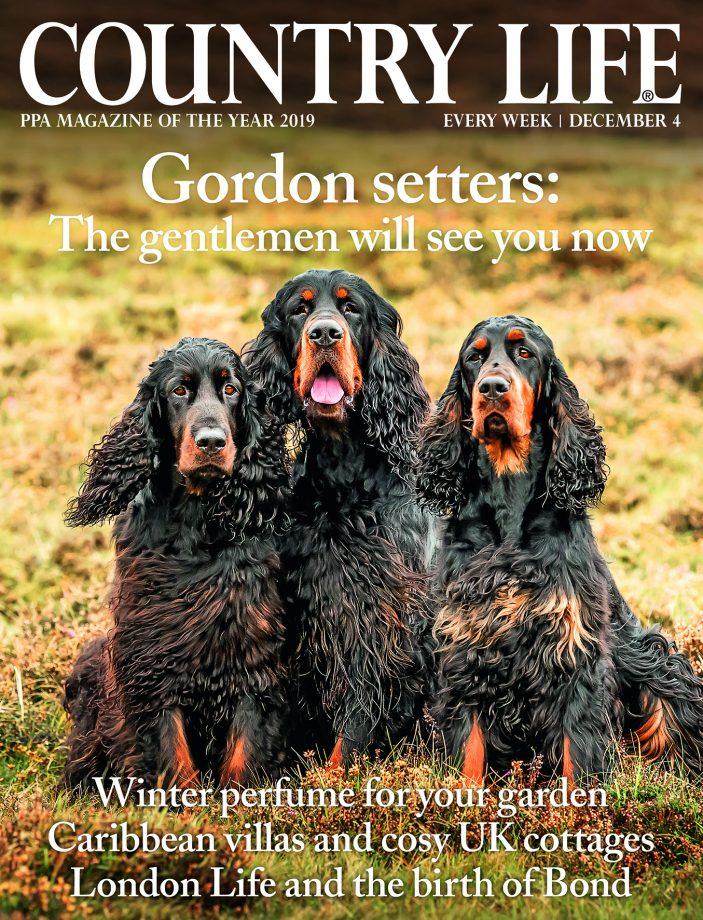 Cover Dec 4 1pp