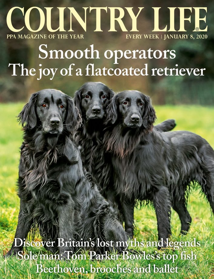 Country Life 8 January 2020
