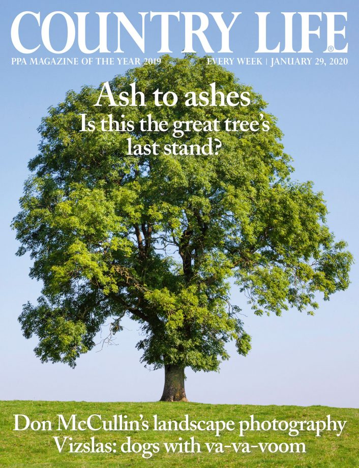 Cover of Country Life 29 January 2020