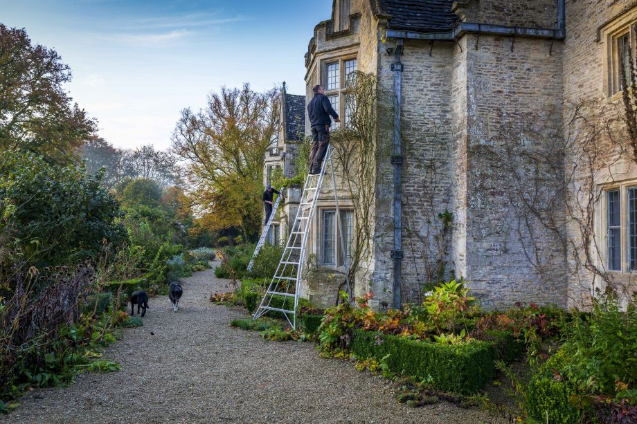 Asthall Manor, Burford - Gardeners up ladders pruning roses on the front wall.