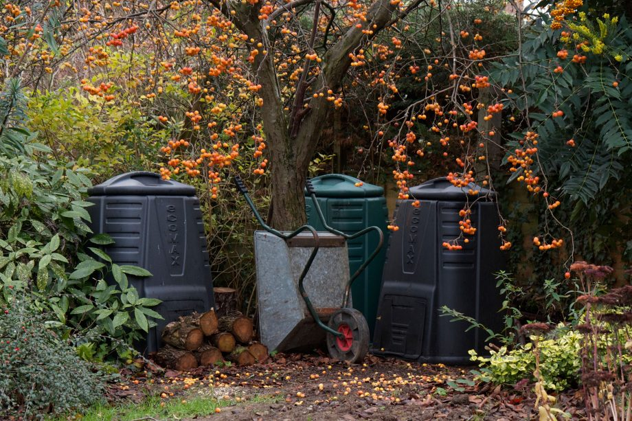Garden compost bins under a crab apple tree with logs and a wheel barrow. A typical English country garden scene.