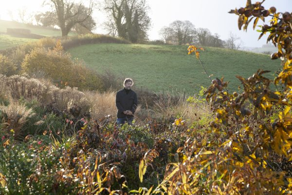 Dan Pearson: A garden has to have boundaries — but they need to be blurred if we're to connect with nature - Country Life