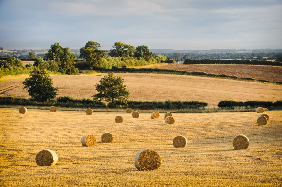 Hay bails and stubble in a field at sunset, Warwickshire, England, UK. Image shot 08/2010. Exact date unknown.
