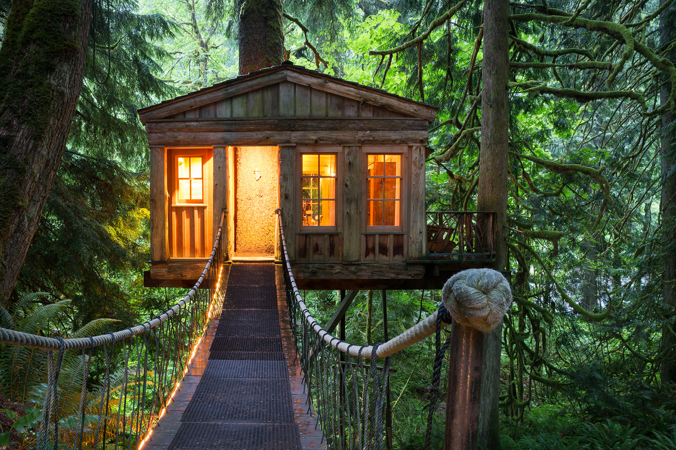 Treehouses: The homes that almost hover in the air, and the people who live in them - Country Life
