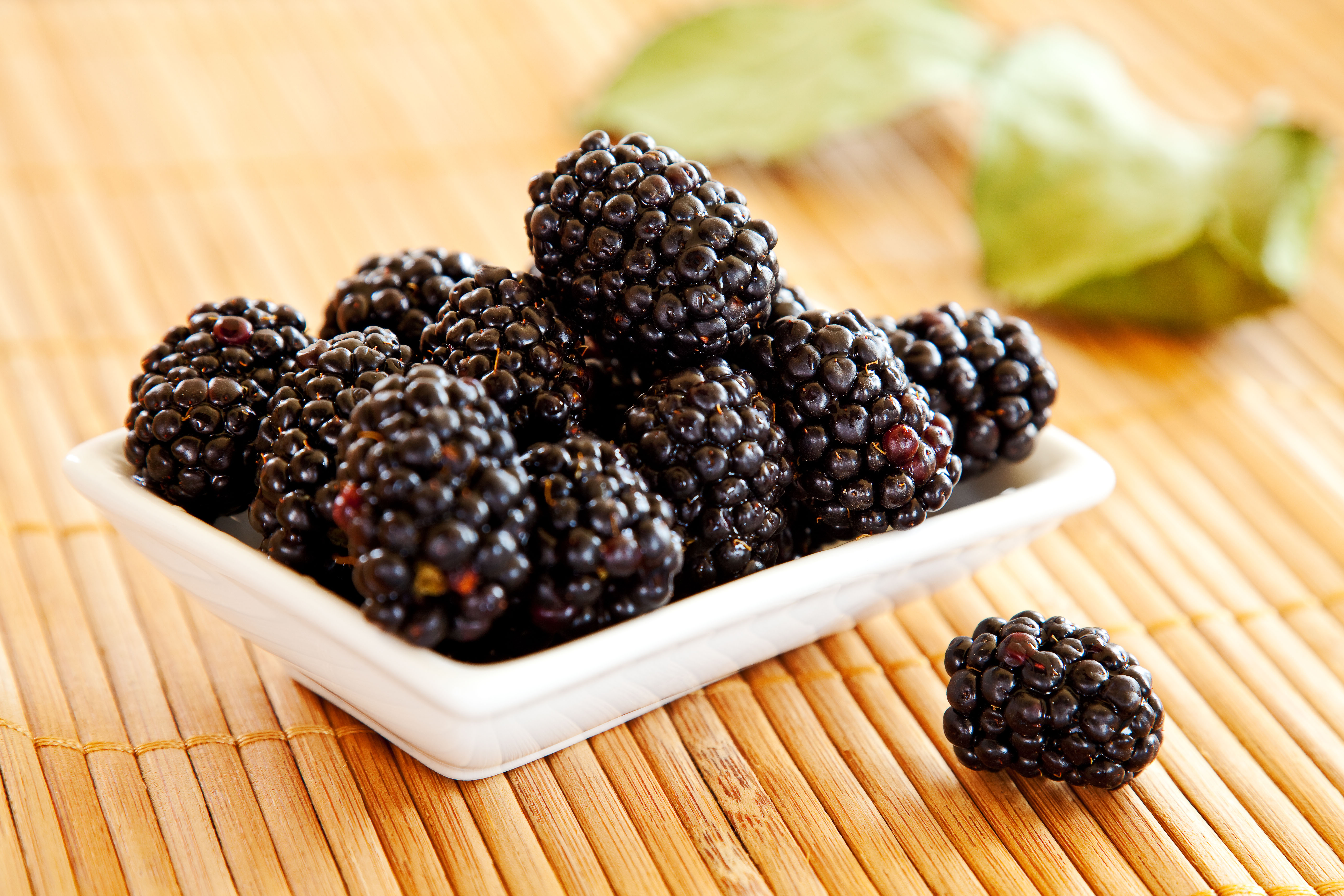 How to grow blackberries that are 'consistently plump, reliably sweet and almost laughably juicy' - Country Life