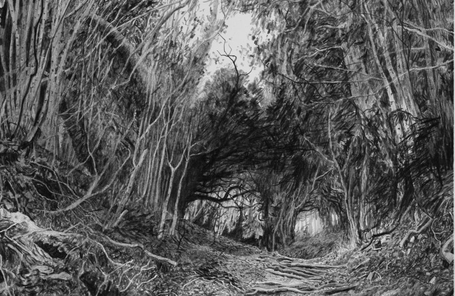 Hanging Hill by Stanley Donwood