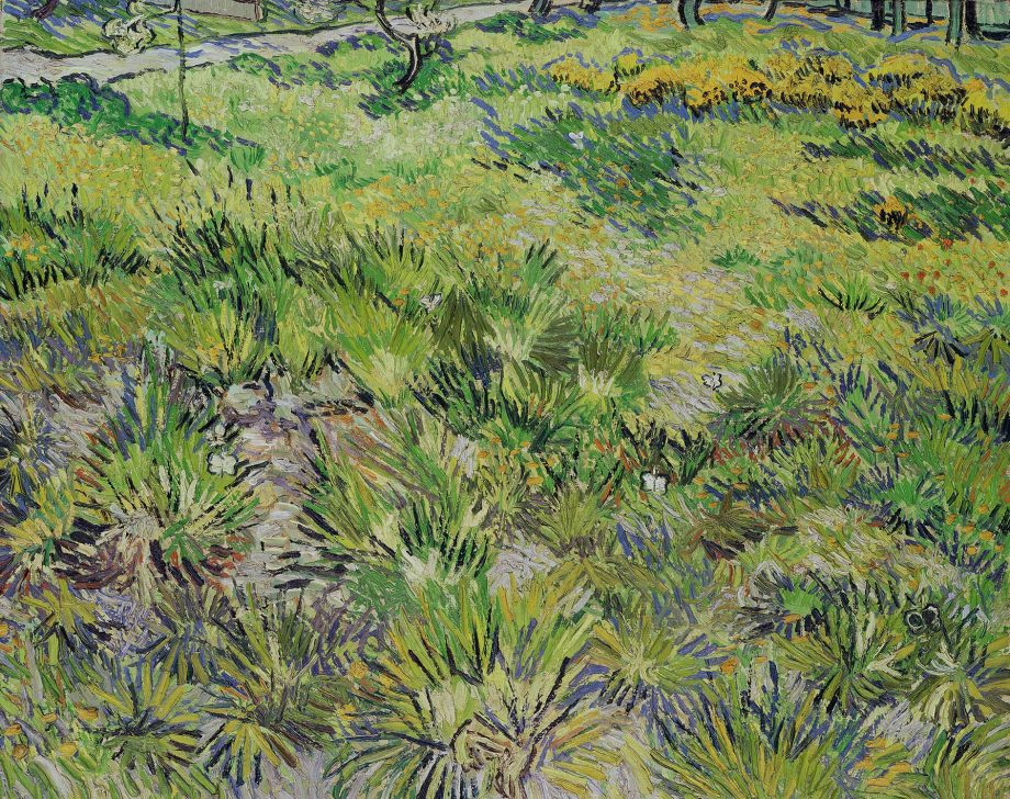 Long Grass with Butterflies, 1890, 25¼in by 31¾in, by Vincent van Gogh (1853–90), National Gallery, London
